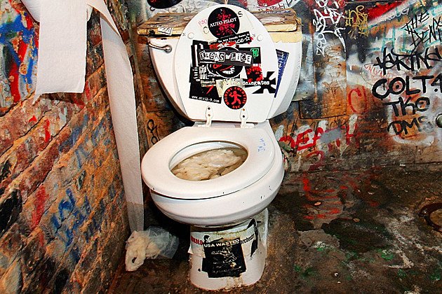 Gross toilet
