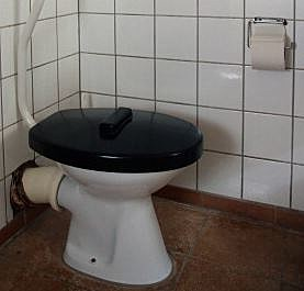 Can I pee here?